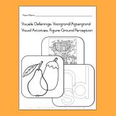 https://teachingresources.co.za/product/visuele-oefeninge-visual-activities-2/