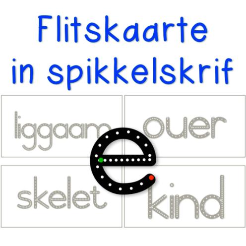 https://teachingresources.co.za/product/flitskaarte-familie-en-liggaamwoorde/