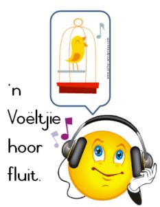 fluitidioom